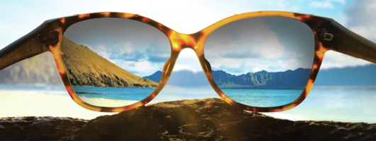 "MAUI JIM ""Love them or return them"""